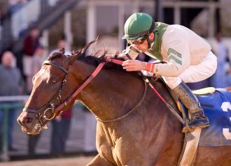 Pimlico Abstraction Passes First Stakes Test In Federico