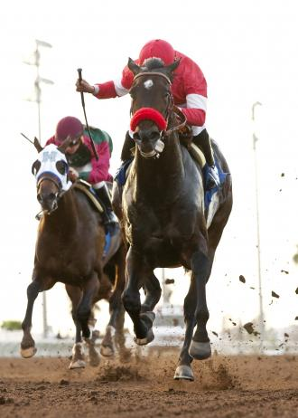More mature Acceptance gets test in Hollywood Derby