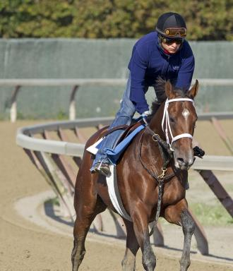 Eight Horses To Run Without Lasix In Breeders Cup Daily