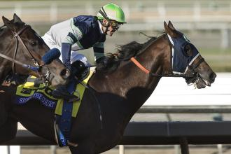 Storm the Court wins the Breeders' Cup Juvenile at Santa Anita