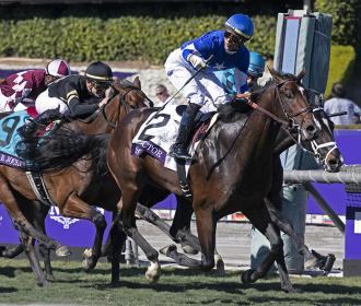 Structor wins the Breeders' Cup Juvenile Turf