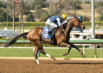 Bigger goals ahead after Blue Tone takes Santana Mile
