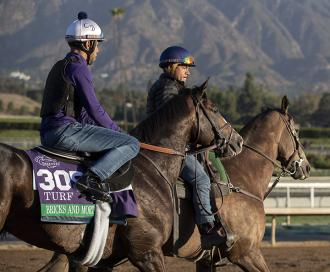 Bricks and Mortar at Santa Anita Park on Oct. 30