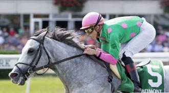 Generazios Double Up In Turf Sprint With Disco Partner Pure Sensation Daily Racing Form