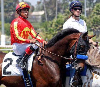 Drill Retired To Get Away Farm In Florida Daily Racing Form