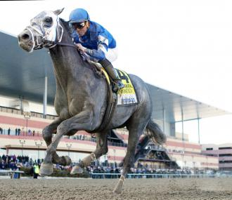 Frosted Horse Pedigree