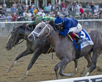 Belmont Park Havana Holds On To Win Champagne Stakes