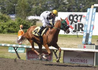 Here's Hannah, the queen of Hastings, begins 5-year-old season in Monashee Stakes