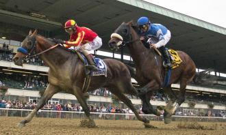 Hoppertunity Outlasts Effinex In Jockey Club Gold Cup