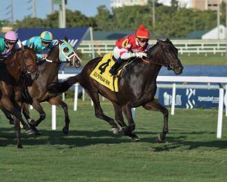 Instilled Regard Breaks Through In Fort Lauderdale Stakes