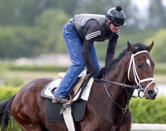 Pletcher Takes Methodical Approach With Khozan Daily