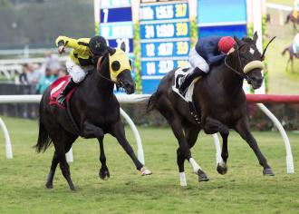 Hard to gauge favorites in Betty Grable Stakes