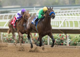 Baffert S Cupboard Far From Bare Following American