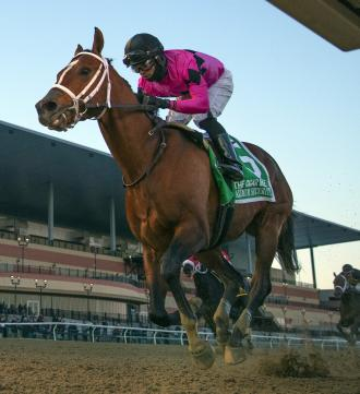 Maximum Security And Team Ending Turbulent Year On A High Note