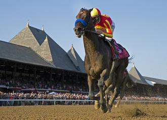 Horse Of The Year Contenders Dot Breeders Cup Races 11