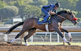 Nyquist sharpens for Haskell by drilling a mile
