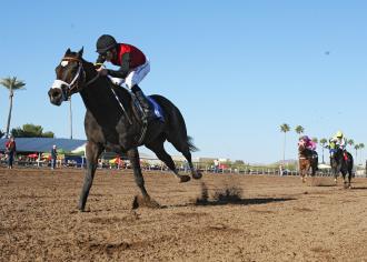 Turf Paradise Persuasive Paul Exits Key Race To Capture