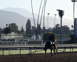 Breeders' Cup training at Santa Anita Park