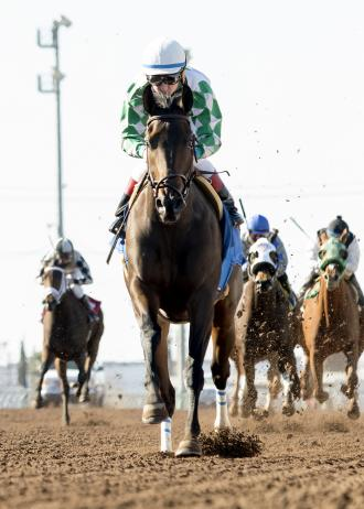 Sircat Sally Making Switch To Turf In Cal Cup Oaks