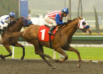 Santa Anita Take Control Son Of A P Indy And Azeri