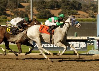 Santa Anita Zazu Takes Lady S Secret Blind Luck Last