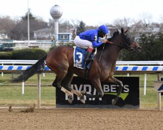 Antoinette Shines In Off Turf Tepin Stakes