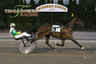 barnbellamay28 tioga downs barn bella now sole track record holder for 3 year old