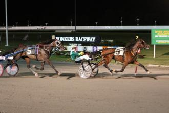 barnbellasep24 yonkers new york sire stakes champions crowned daily racing form