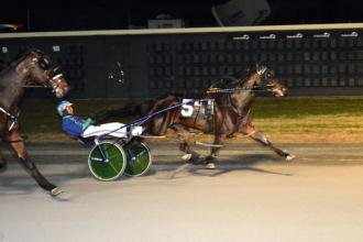 Dover: Tall Drink Hanover knocks off Warrawee Ubeaut in Matron - Daily Racing Form