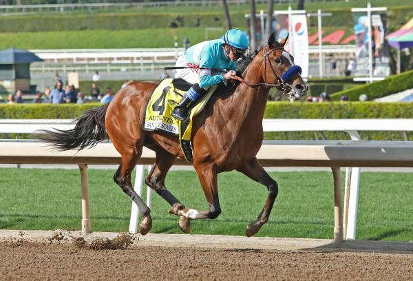 Drf bets wager on kentucky derby bet on yourself to lose weight