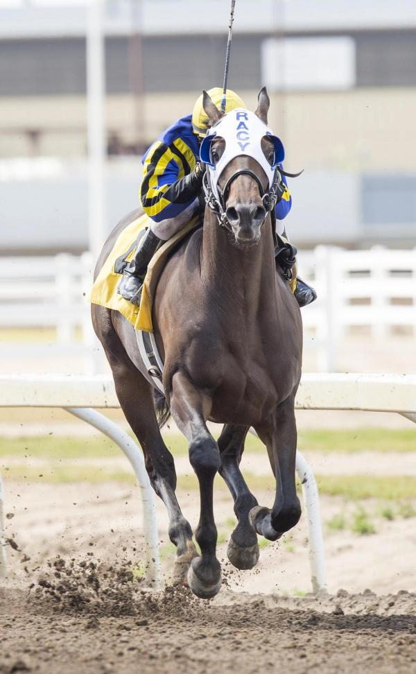 Blue Dancer, Killin Me Smalls meet again in Westerner Handicap