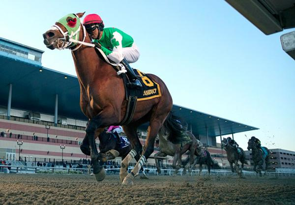 Mischevious Alex wins the Gotham Stakes at Aqueduct