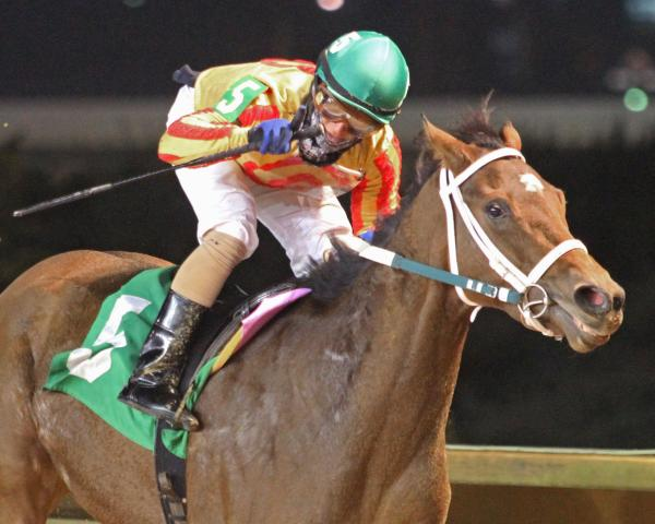 Parisian Diva makes Eleanor Casey first stakes win