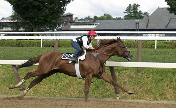 Romans works horses for Saratoga stakes, and makes decision