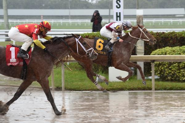 Sir Anthony ($53 80) upsets Audible in Harlan's Holiday