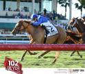 Almanaar wins the Gulfstream Park Turf Handicap