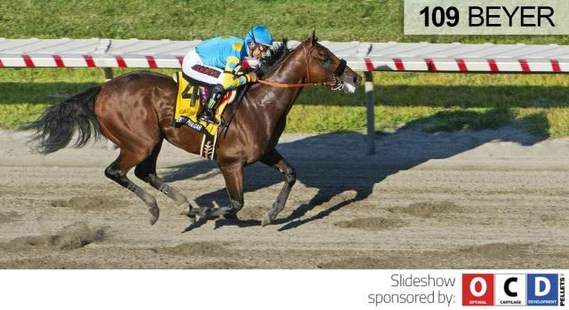 American Pharoah wins the Haskell