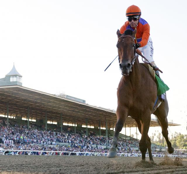 Beholder coasts to a BC Distaff win