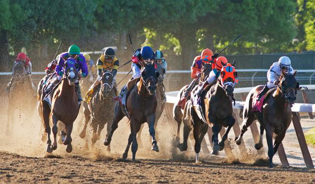 The field comes down the Belmont Stakes stretch