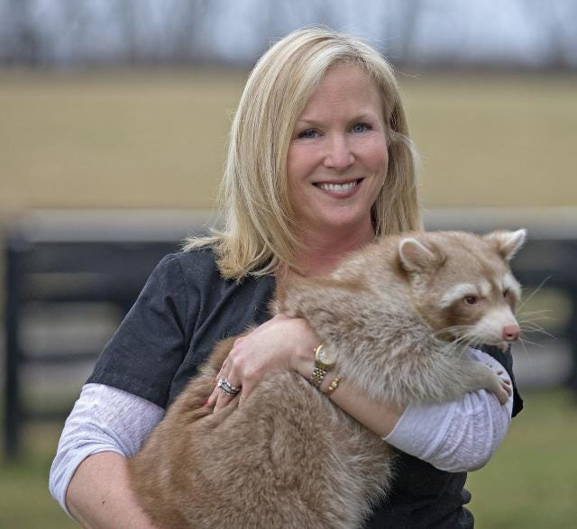 Karen Bailey with raccoon