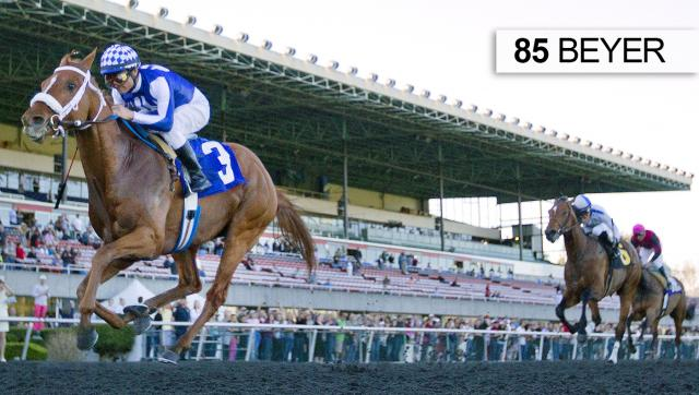 Metaboss wins the El Camino Real