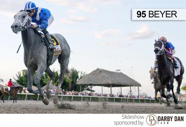 Mohaymen wins the Fountain of Youth