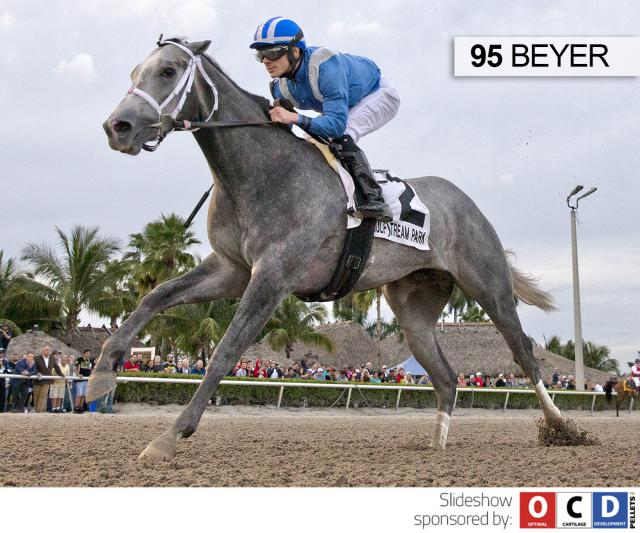 Mohaymen wins the Holy Bull