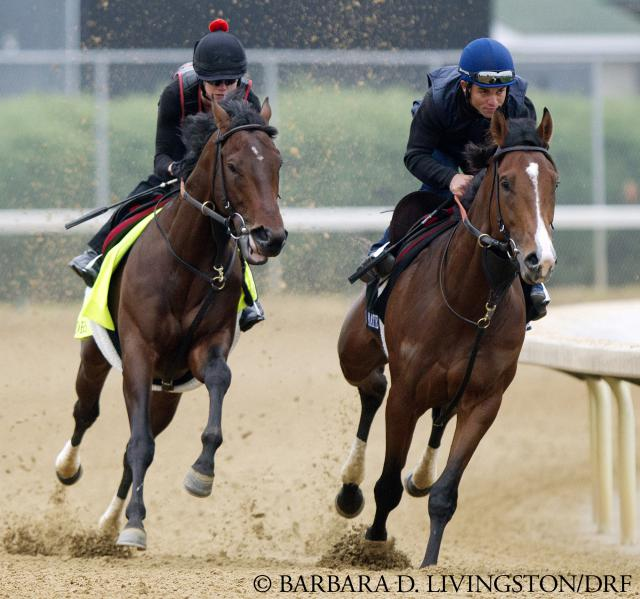 Orb and Overwhelming train on April 29