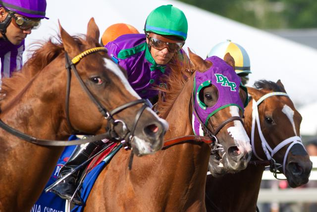 California Chrome early in the Preakness