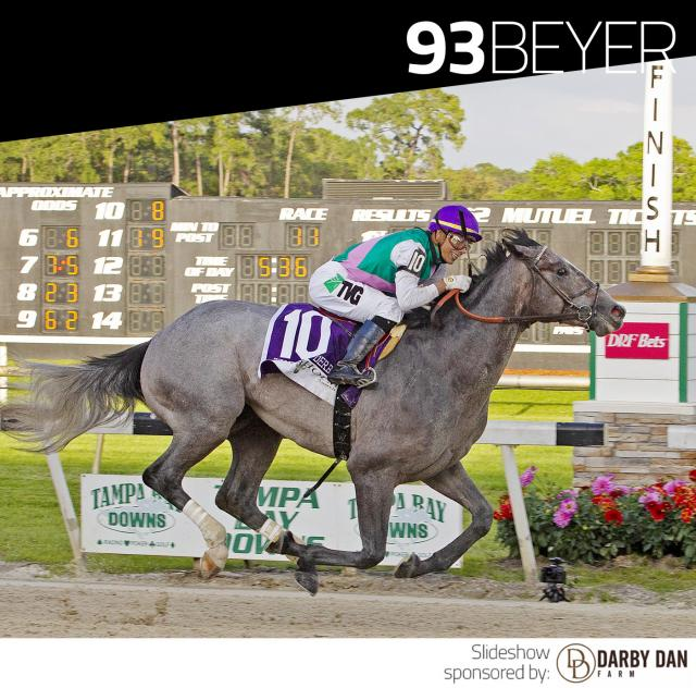 Tacitus wins the Tampa Bay Derby