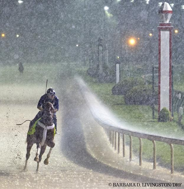 Tapiture trains in a downpour April 28