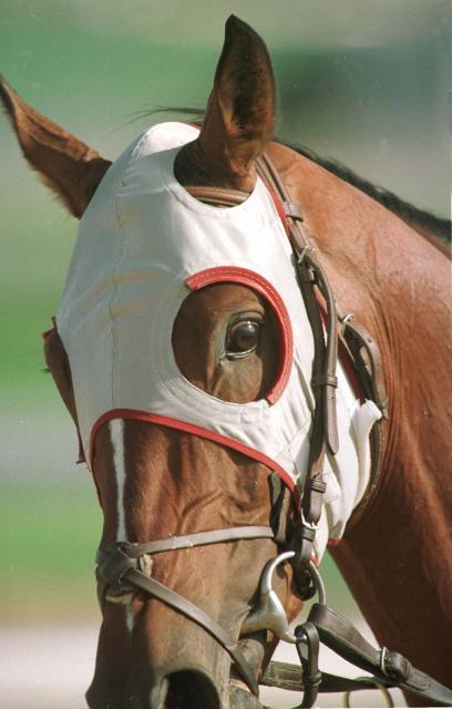 horse-racing-blinkers