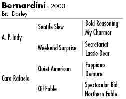 Bernardini pedigree