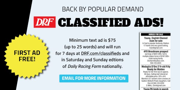 DRF Classifieds | Daily Racing Form